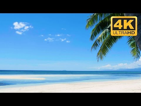 Relaxing Nature  in Ultra : Tropical Beach in 4K