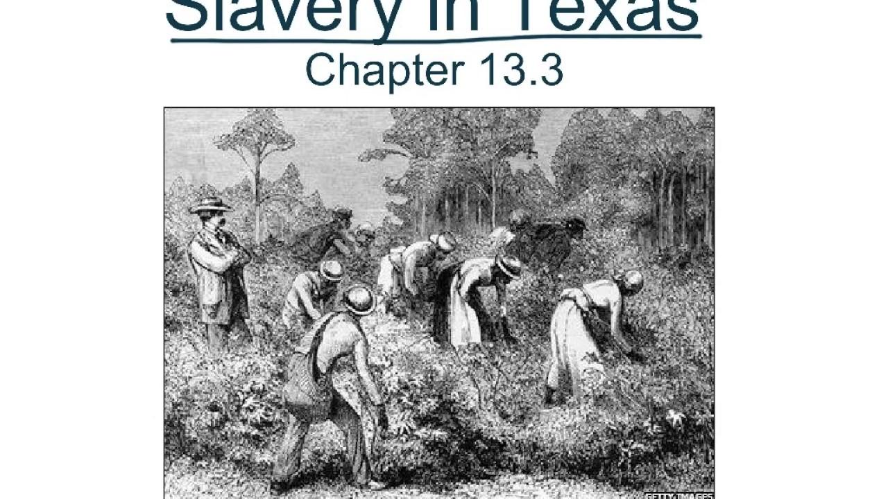 pro slavery Proslavery: a history of the defense of slavery in america, 1701-1840 [larry tise] on amazoncom free shipping on qualifying offers probing at the very core of the american political consciousness from the colonial period through the early republic.