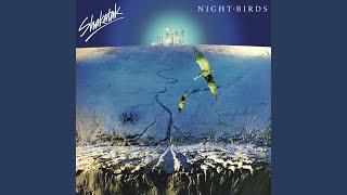 Gambar cover Night Birds