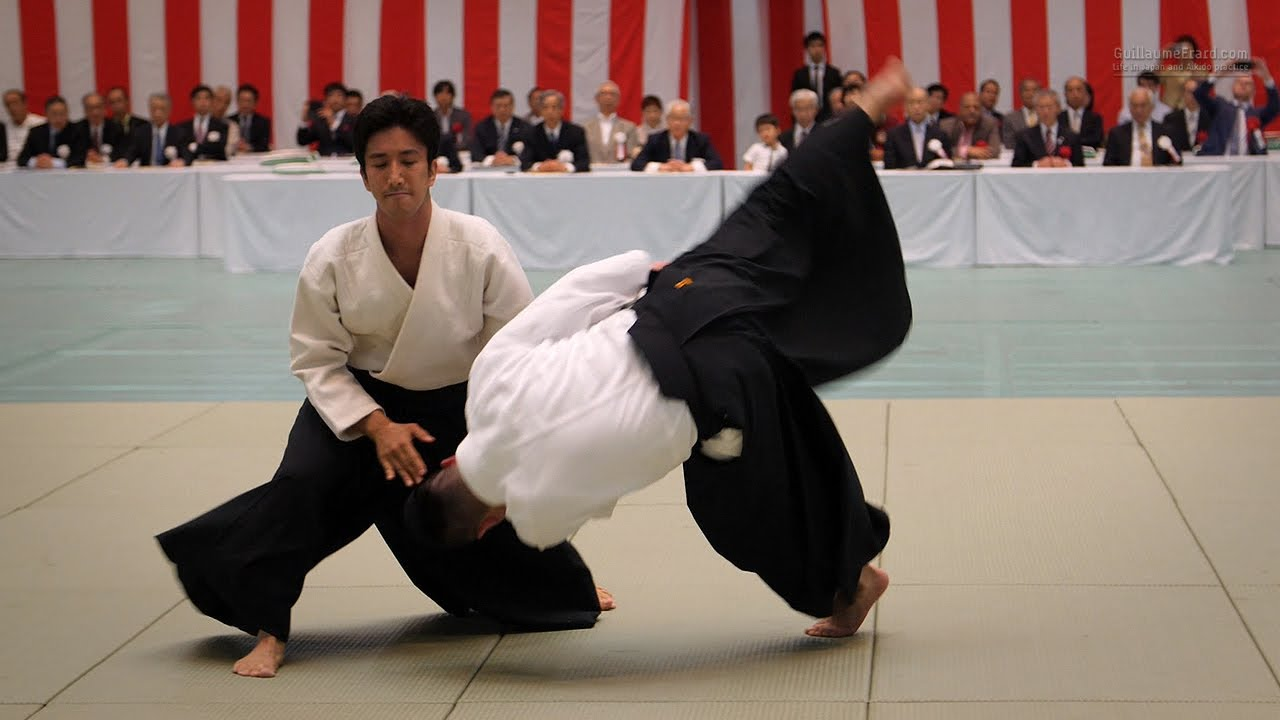 Aikido is a Japanese martial art. Aikido: description, technique and reviews 26