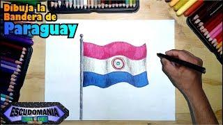 Como dibujar y pintar la bandera nacional de Paraguay
