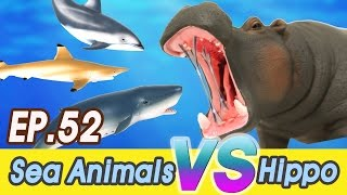 [EN] #52 hippopotamus likes Sea animals (Whales, Sharks) CollectaㅣCoCosToy