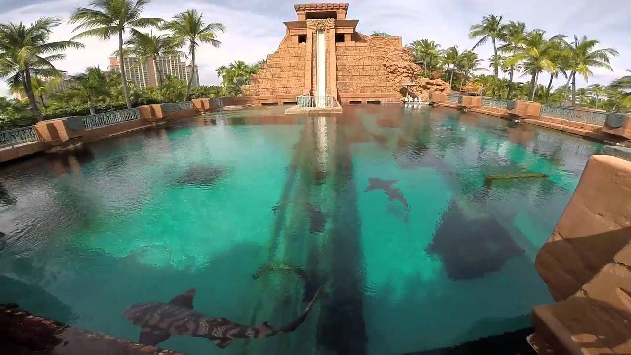 Fun Fall Desktop Wallpaper Atlantis Bahamas Water Park January 2015 Youtube