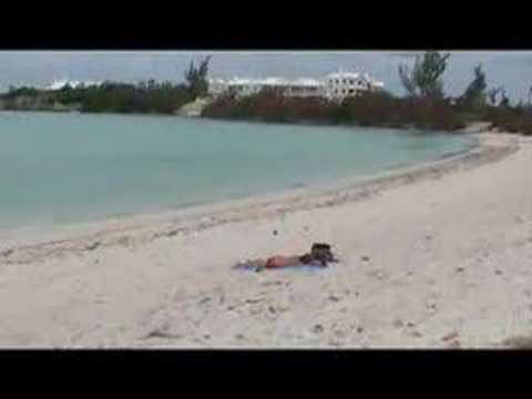 Bermuda Public Beach Review of Shelly Bay
