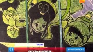 В Японии высадили гигантский рисунок из рисовых полей, который вошел в Книгу рекордов Гиннеса
