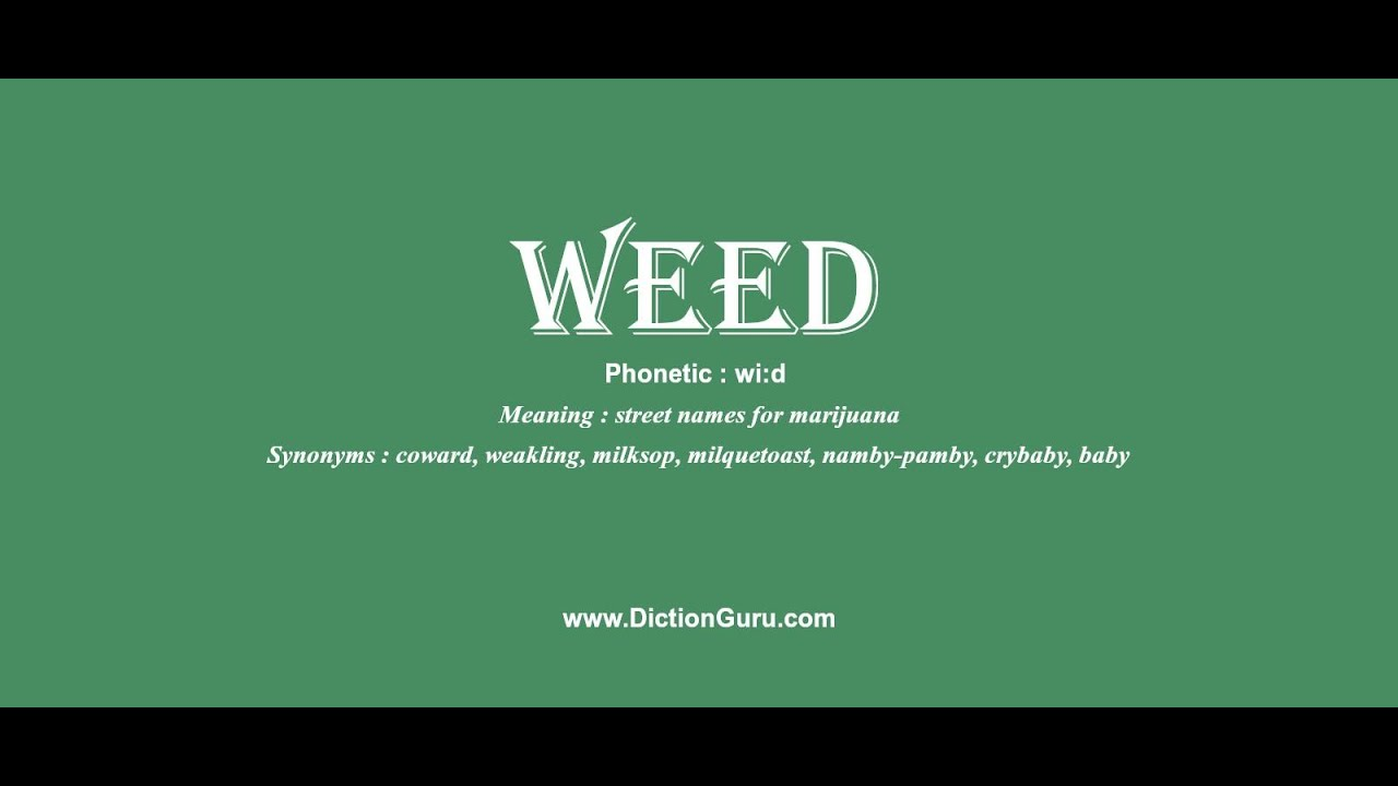 weed: How to pronounce weed with Phonetic and Examples