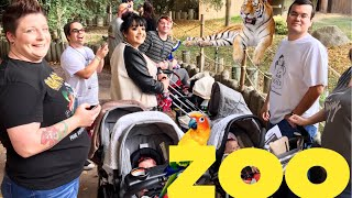 Reborn Baby Outing! Day at the Zoo!