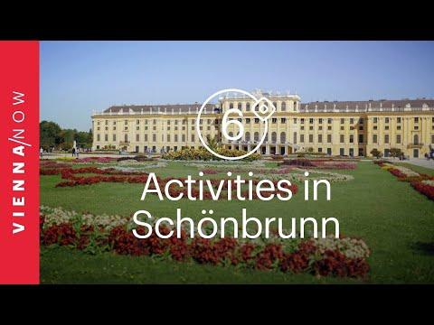 6 fun activities