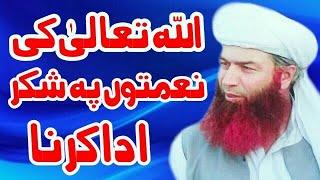 New Saifi Bayan اللہ تعالیٰ کی نعمتوں پہ شکر ادا کرنا by Peer Zafar Abbas Muhammdi Saifi sb JRW.