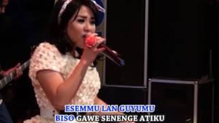 Top Hits -  Vita Kdi Esem Guyumu Official