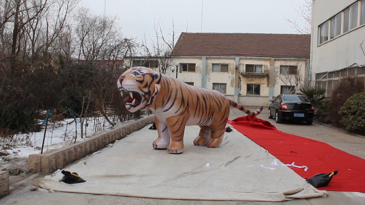 inflatable tiger costume inflatable walking costumes & inflatable tiger costume inflatable walking costumes - YouTube