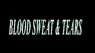 Ava Max - Blood, Sweat & Tears [ Lyric ]