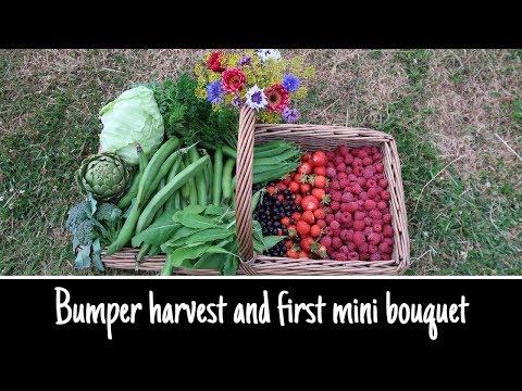 ORGANIC FRUIT, VEGETABLE AND FLOWER HARVEST