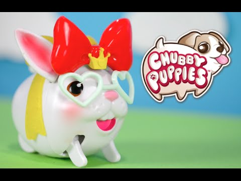 New Chubby Puppies And Friends Chubby Bunny Youtube