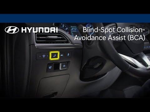 Blind-Spot Collision-Avoidance Assist Explained | Palisade | Hyundai