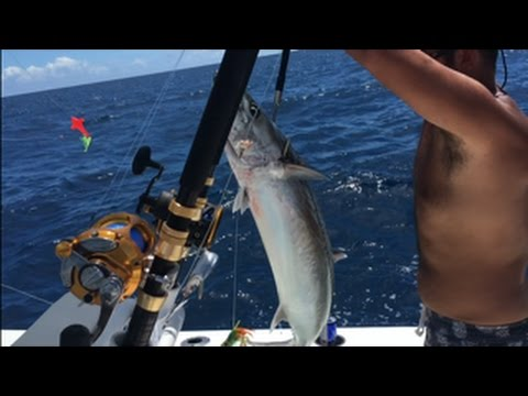 Trolling For Kingfish & Black Fin Tuna Offshore SC & Inlet Fishing At Murrells Inlet, SC (Aug 2016)