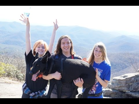 Blood Mountain Climb - 03/15/2015