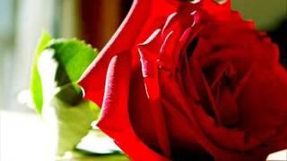 รักปักใจ - ลินจง บุนนากรินทร์