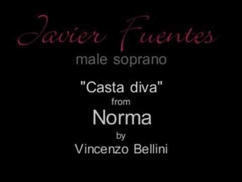 Bellini casta diva javier fuentes male soprano youtube - Casta diva youtube ...