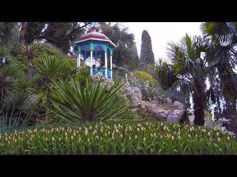 Никитскийботанический сад. Ялта. Совсем скоро парад тюльпанов! Крым 2019