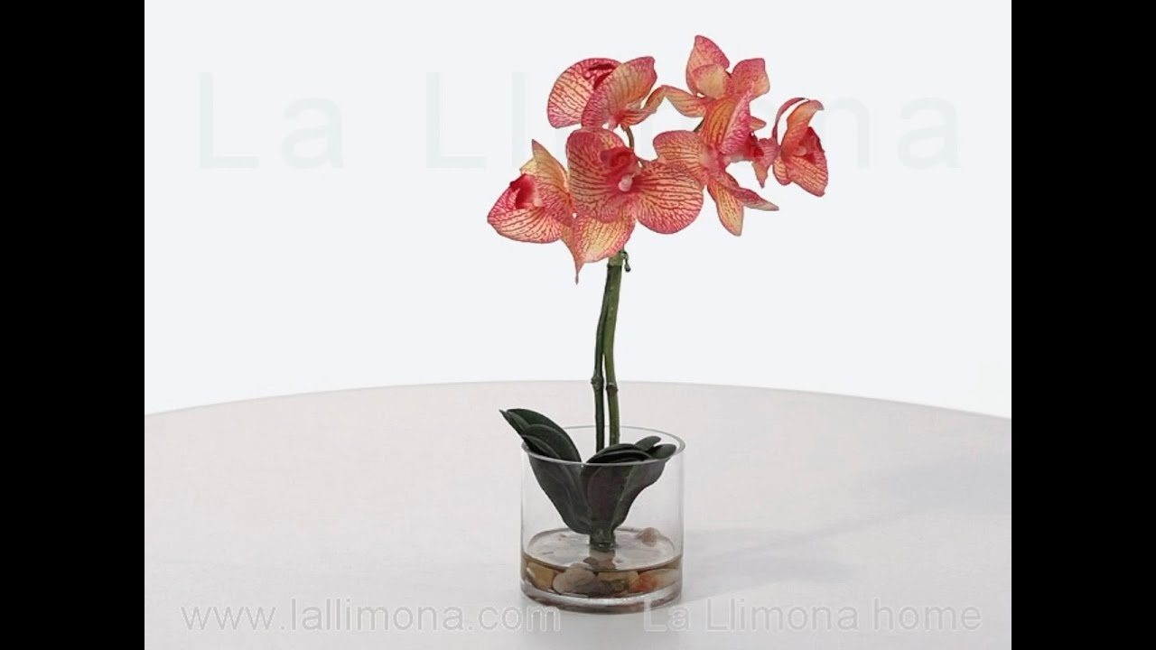 Planta flores orquideas artificiales mixturadas maceta for Orquideas artificiales