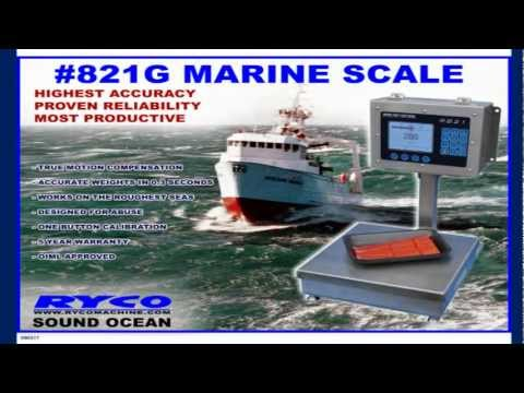821G Marine Scale (Motion Compensated)