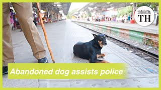Meet Chinnaponnu, an abandoned dog who is now assisting RPF personnel