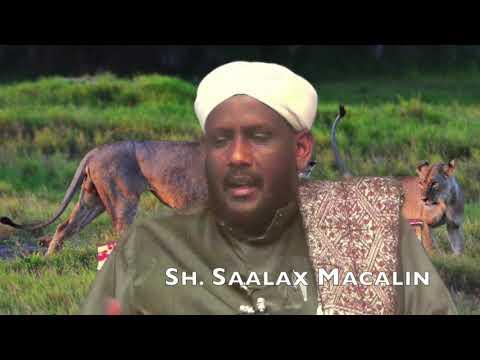 Waa Qisadii Xajaaj Bin Yusuf Iyo Saciid Binu Juweer  Sh  Saalax Maclin