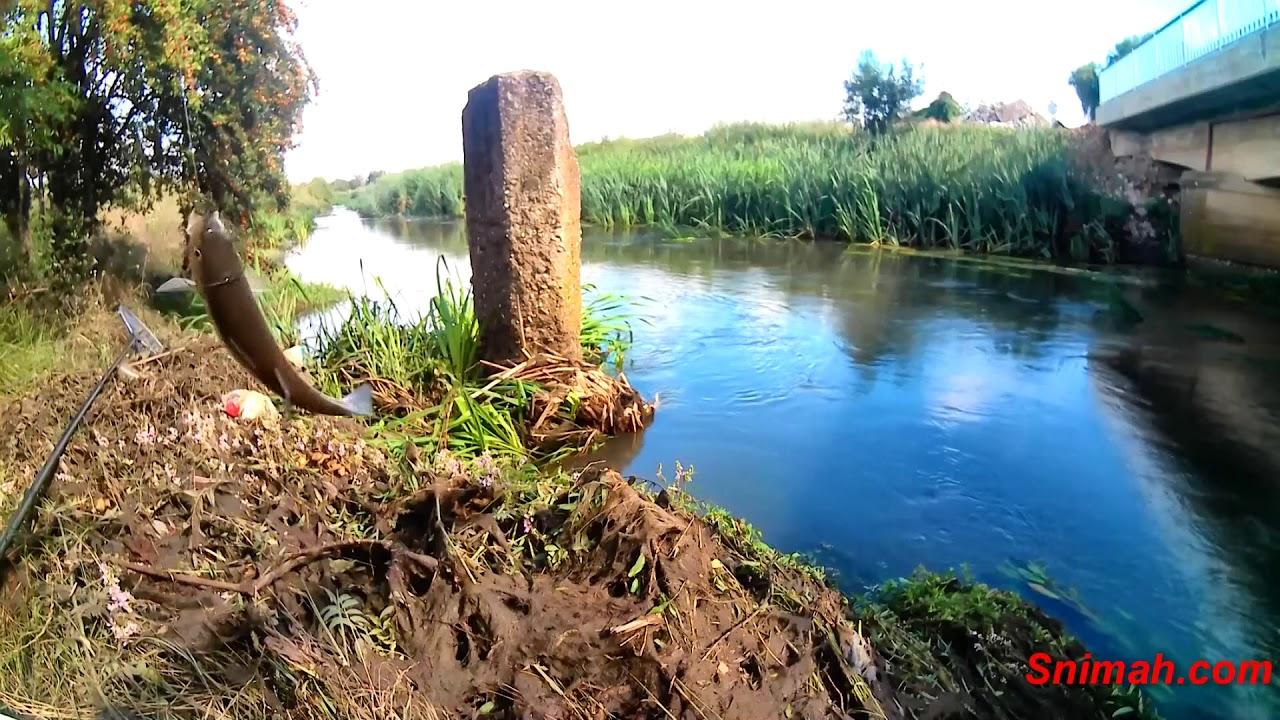 Риболов в дъжда на река Блато - юли 2018 - YouTube