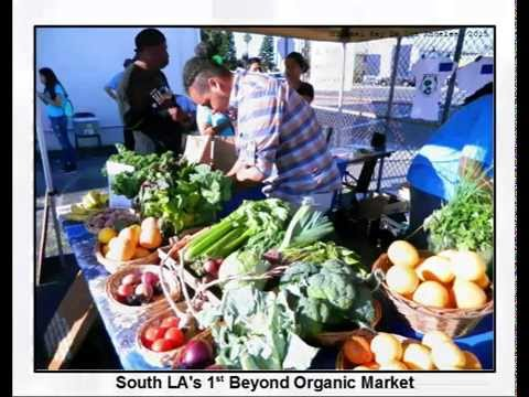 South LA's First Beyond Organic Produce and Grocery Market hosted by Community Services Unlimited