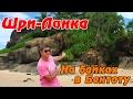 ШРИ-ЛАНКА своим ходом: почти Сейшелы - пляж Бентота! Экскурсия по реке и местный рынок! #10