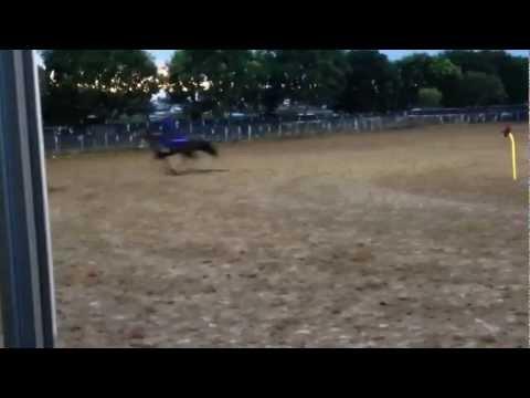Ken May riding Glenconn Instrumental