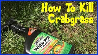 How to Kill Crabgrass - Spectracide Crabgrass Killer