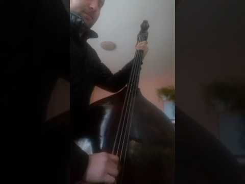 Naš basista Toša solo kolo na basu