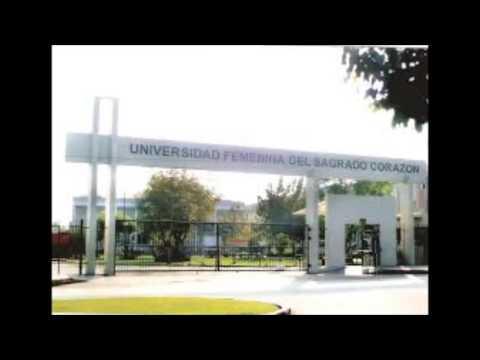 UNIFE University