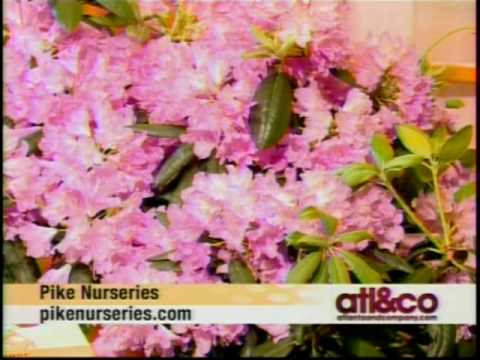 Atlanta & Co. Segment Featuring Pike Nurseries May 5, 2010
