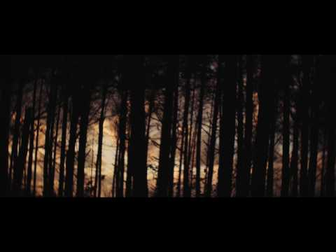 Bing & Ruth - Starwood Choker (Official Video)