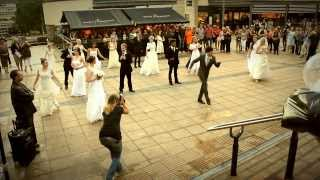 Make My Day Events | Wedding Flash Mob I