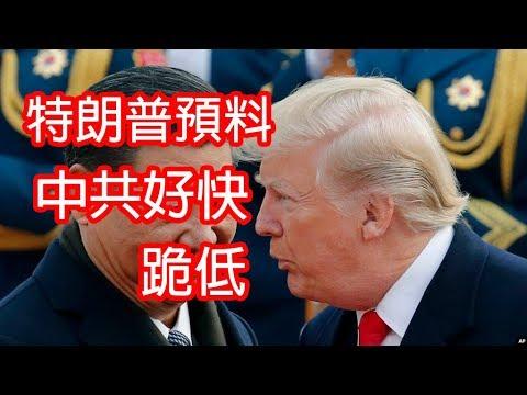 美帝宣布💪對華為禁令延遲90日😲華為示範如何告政府🤪2019_5_21