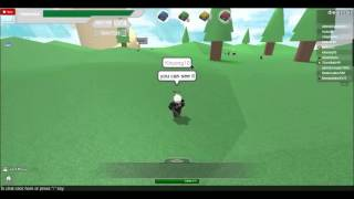 Hacker on roblox, SAO