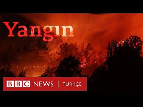 Yangın: Türkiye'nin alevlerle mücadelesi