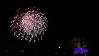 【夜梅祭2018】夜梅花火 ~春魁(さきがけ)の花火~【野村花火工業】Night plum fireworks
