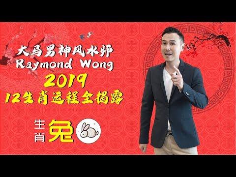 大马男神风水师Raymond Wong【2019年生肖运程全揭露!】生肖:兔