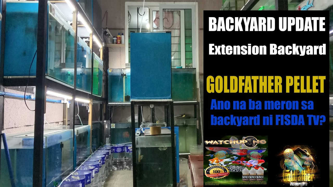 Download GoldFather Pellet   BACKYARD UPDATE + Extension  BY FISDA TV