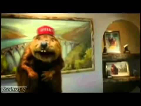 Netflix Beaver Dub Version