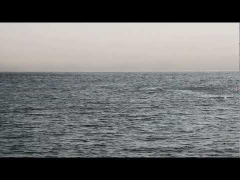 Ocean Observation