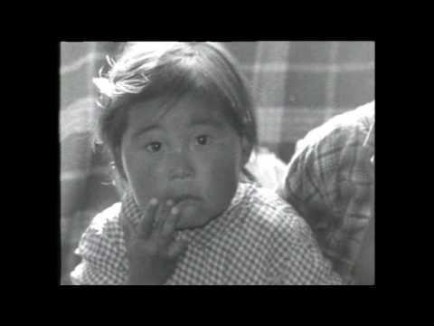Kalaallit Nunaanni misigisat, DR, KNR 1994