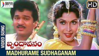 Brindavanam Telugu Movie Songs | Madhurame Sudhaganam Video Song | Rajendra Prasad | Ramya Krishna