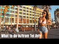 What to do in & day trips out of Tel Aviv