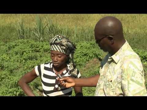Wontanara - Vidéo participative en Guinée